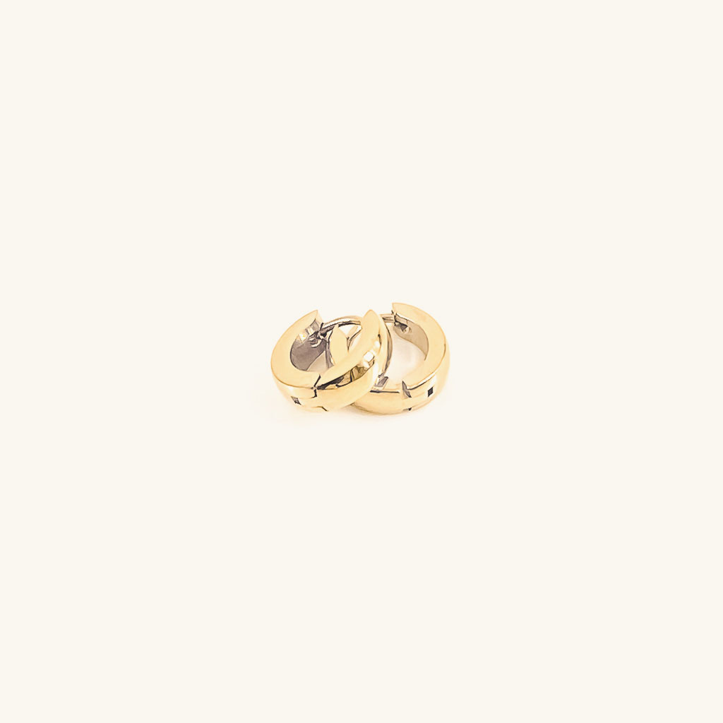 Gold plated Lizzy hoops earrings jewelry